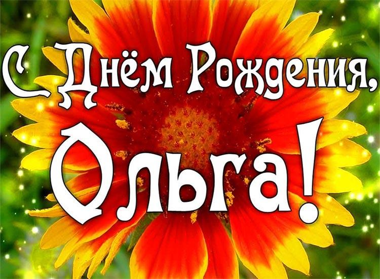 фотографии росянка картинки с днем рождения ольга владимировна прикольные инструкция открытию